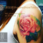 sgshadow-tattoo-gallery (14)